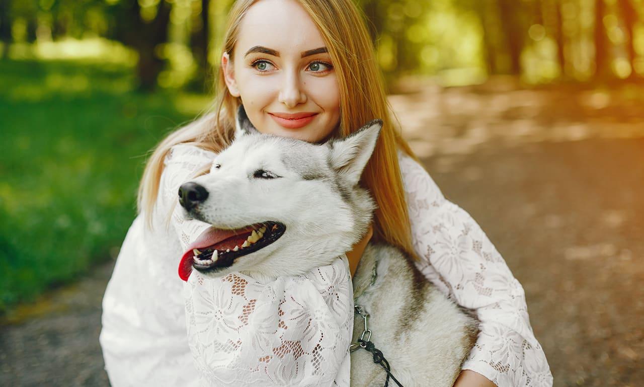 gezonde honden