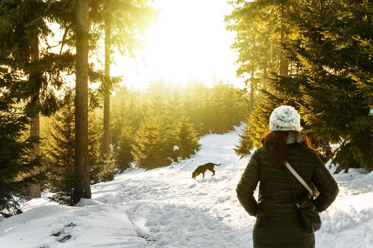 Tips om uw hond actief te houden in de wintermaanden