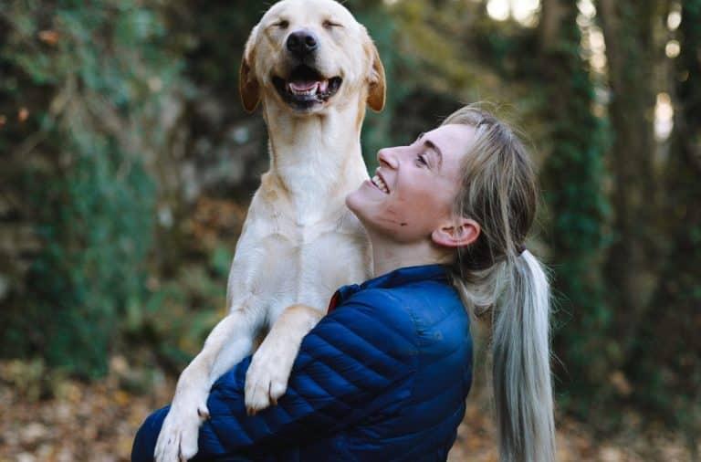 veranderen van hondenvoer