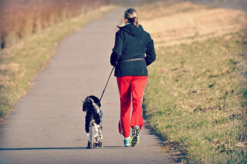 Cani-run, hardlopen samen met je hond