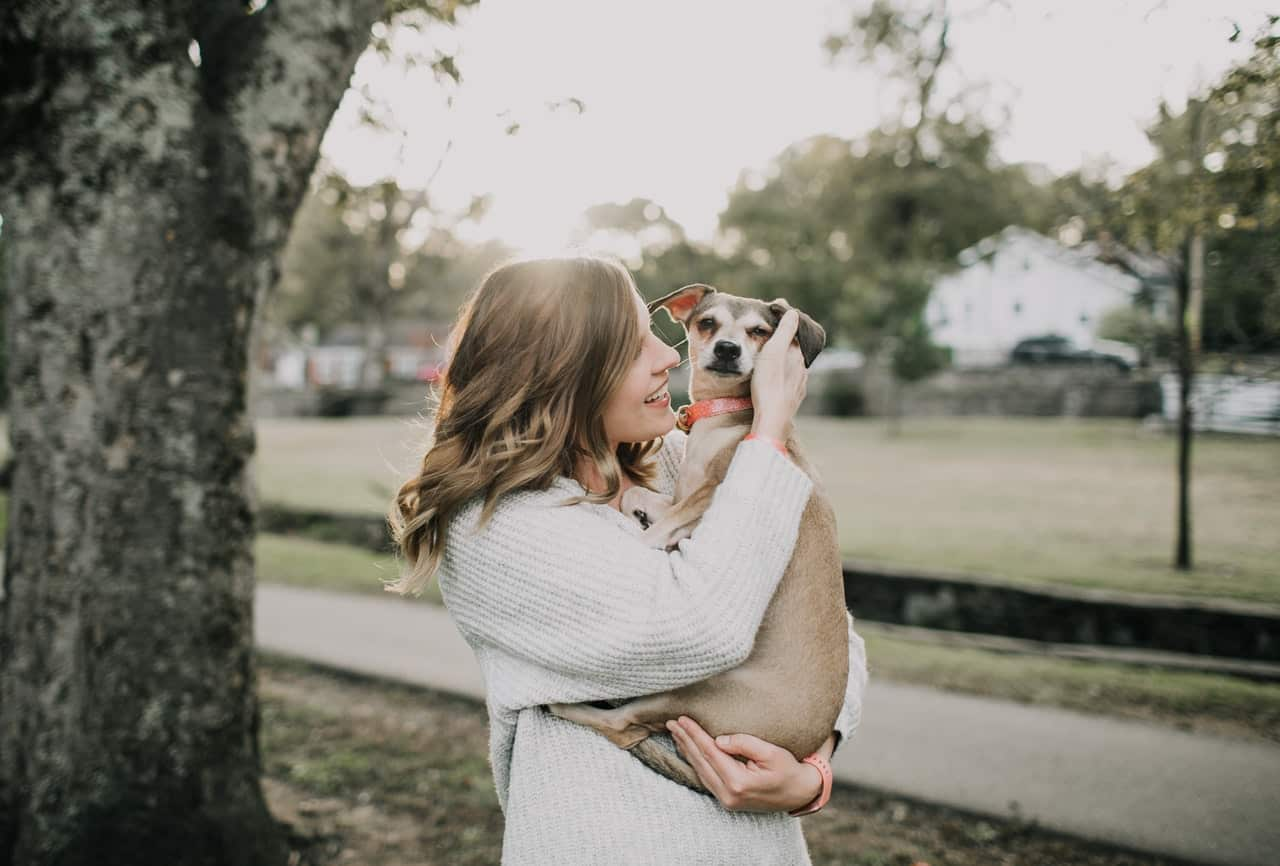 10 spelletjes voor je hond