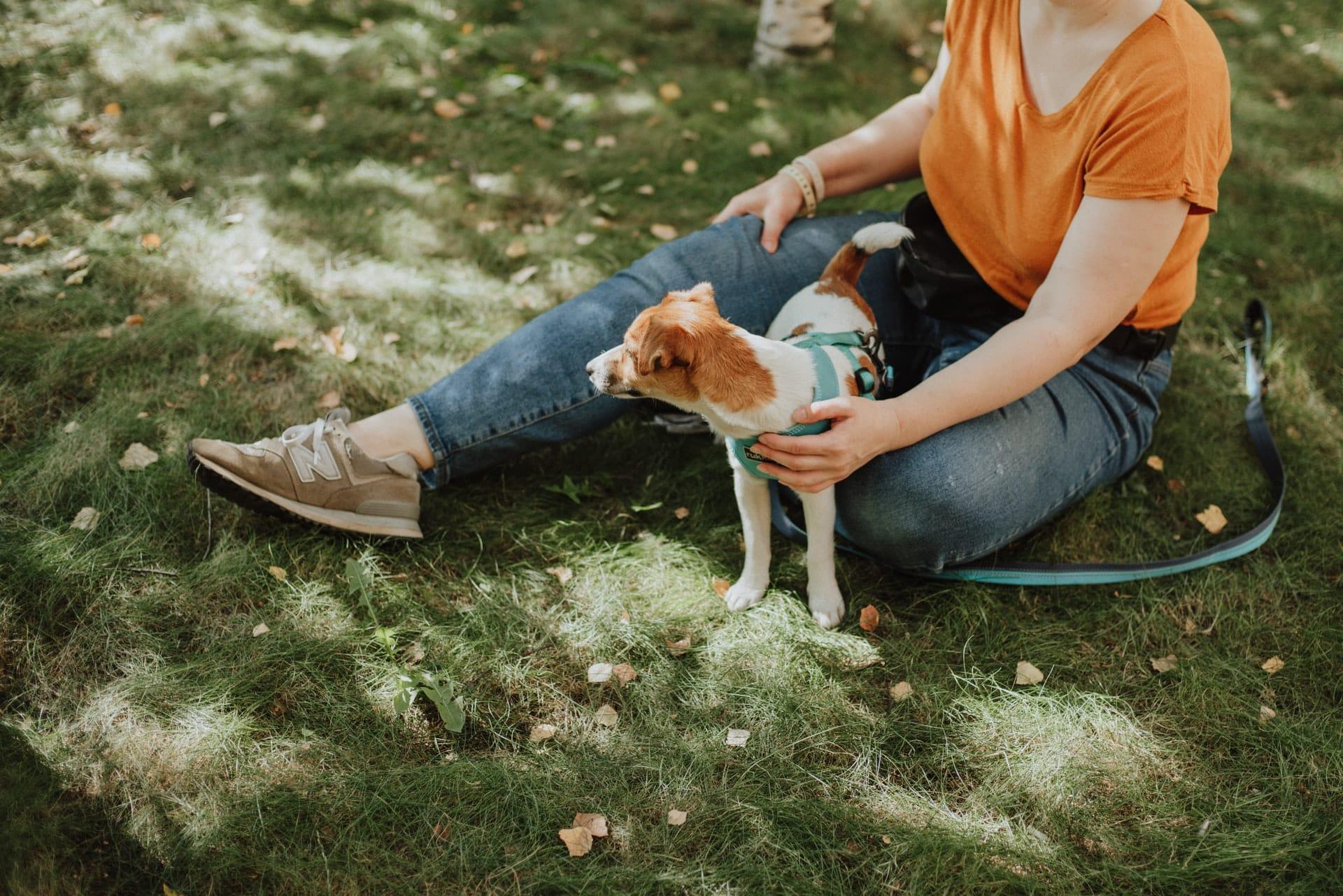 hondenbelasting afschaffen