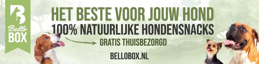 bellobox
